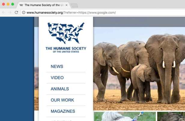 HumaneSocietyPage